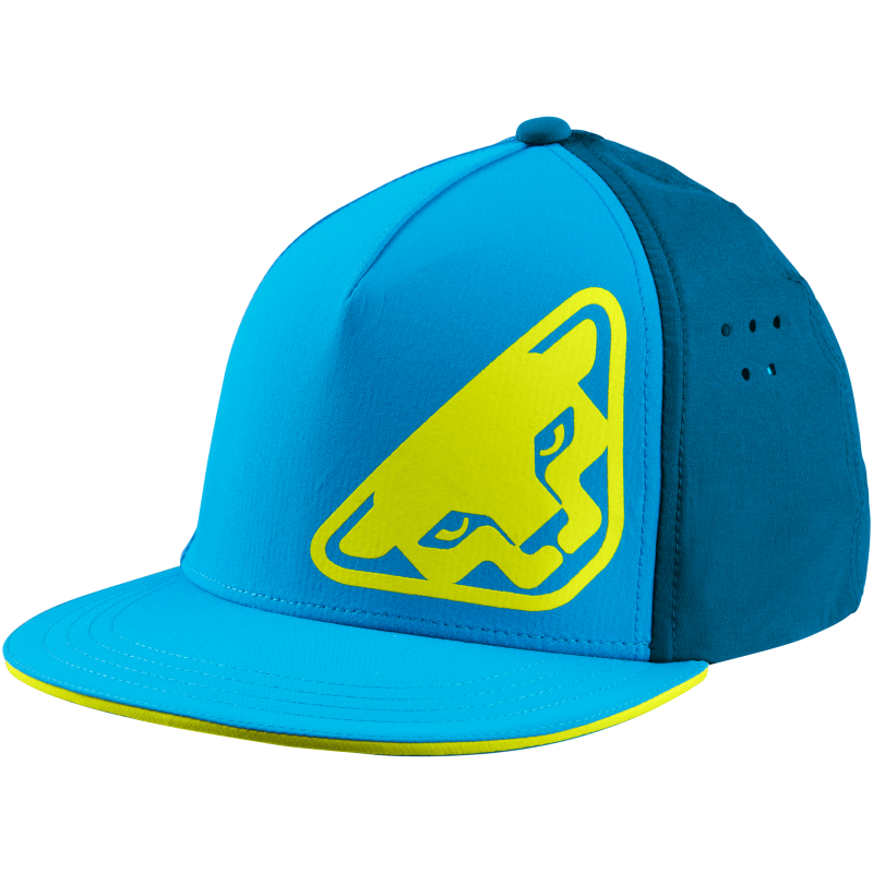 Dynafit TECH TRUCKER CAP 8941