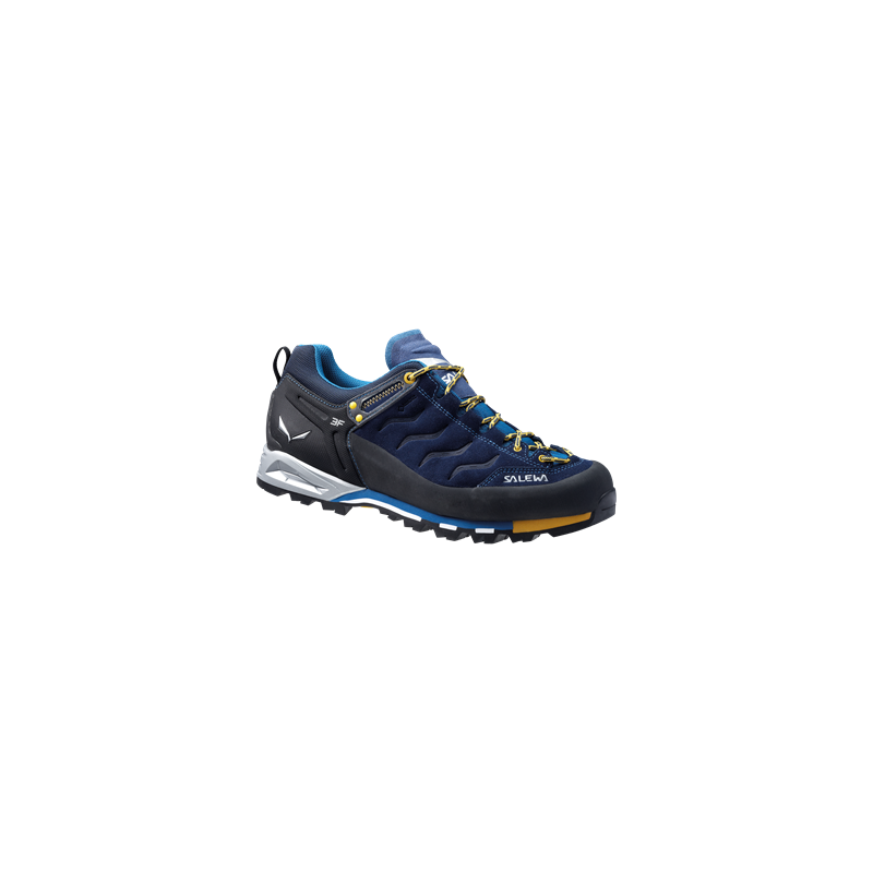 Salewa MTN TRAINER GTX 0334