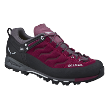 Salewa MTN TRAINER 1668